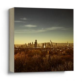 Quadrat Frankfurter Bubb - Skyline von Süden